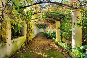 Download the wall poster design of grass path, columns and plants