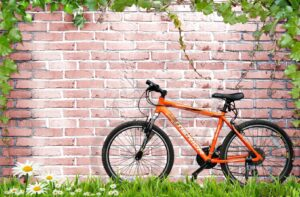 Download bicycle wall poster design and brick wall and white flowers